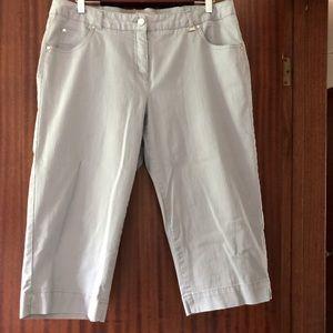TANJAY Grey Capris Size 12
